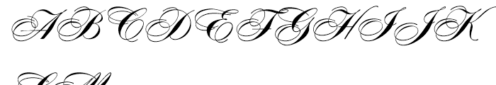 Concerto Bold Font UPPERCASE