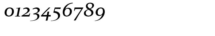 Constantia Italic Font OTHER CHARS