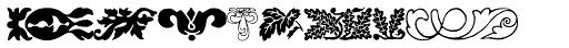 Collins Florets XYR Font UPPERCASE