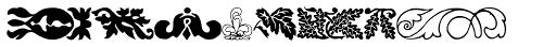 Collins Florets XYR Font LOWERCASE