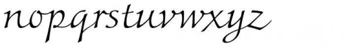 Colombine Std Light Font LOWERCASE