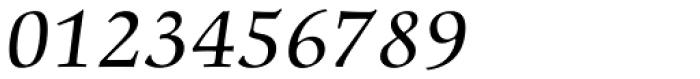 Comenius Antiqua Italic Font OTHER CHARS
