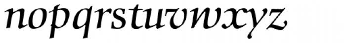 Comenius Antiqua Italic Font LOWERCASE