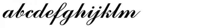 Commercial Script Font LOWERCASE