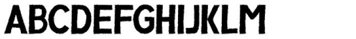 Compagnon Regular Font UPPERCASE