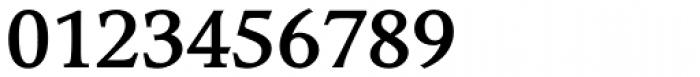 Compatil Exquisit Pro Bold Font OTHER CHARS
