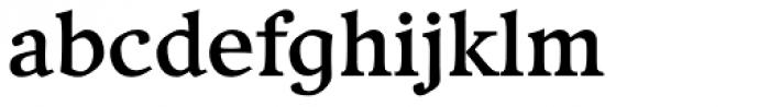 Compatil Exquisit Pro Bold Font LOWERCASE