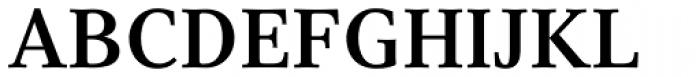 Compatil Text Pro Bold Font UPPERCASE