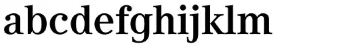 Compatil Text Pro Bold Font LOWERCASE