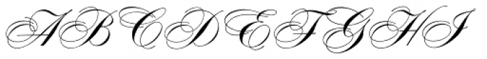 Concerto Pro Font UPPERCASE