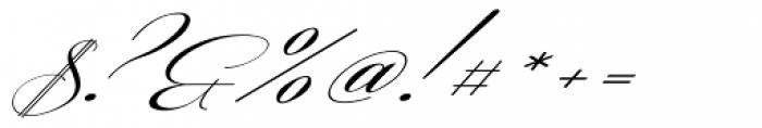 Coneria Script Slanted Light Font OTHER CHARS