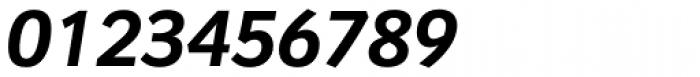 Congress Sans Std Bold Italic Font OTHER CHARS