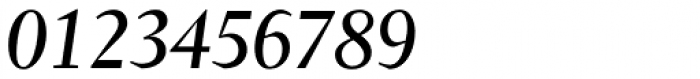 Conqueror Text Italic Font OTHER CHARS
