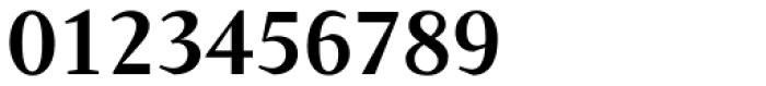 Conqueror Text Medium Font OTHER CHARS