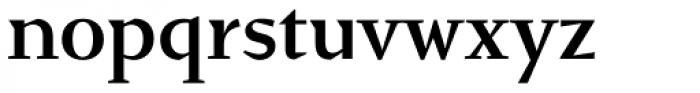 Conqueror Text Medium Font LOWERCASE