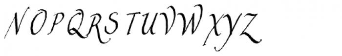Constanza Font UPPERCASE