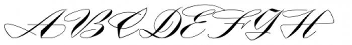 Contempo Elan Grand Script Font UPPERCASE