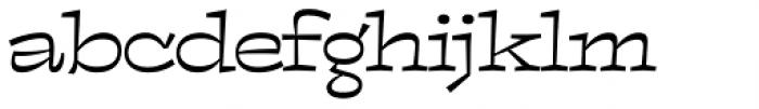 Cowgirl Regular Font LOWERCASE