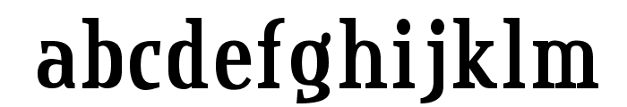 CreditValley-Bold Font LOWERCASE