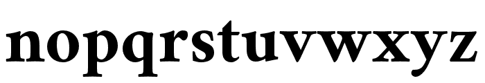 Crimson Bold Font LOWERCASE