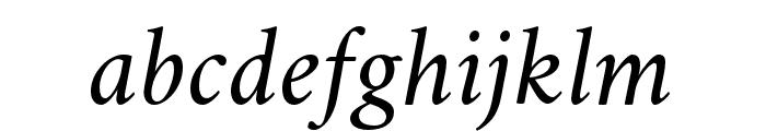 Crimson Italic Font LOWERCASE