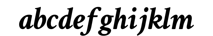 Crimson Text Bold Italic Font LOWERCASE