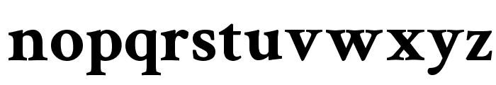 Crimson Text Bold Font LOWERCASE