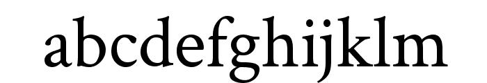 Crimson Text Font LOWERCASE