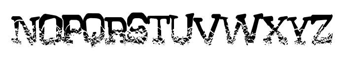 CrystalHouse Font LOWERCASE