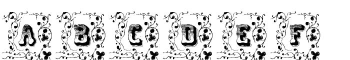 Cripto Font Ornamental Font LOWERCASE