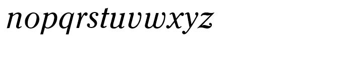 Criterion Italic Font LOWERCASE