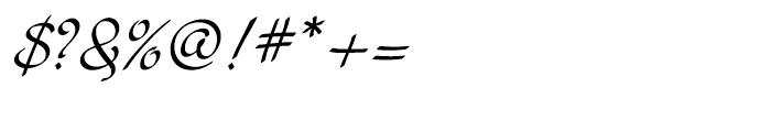 Cruz Script Calligraphic Font OTHER CHARS