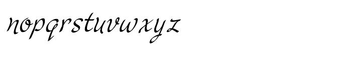 Cruz Script Calligraphic Font LOWERCASE