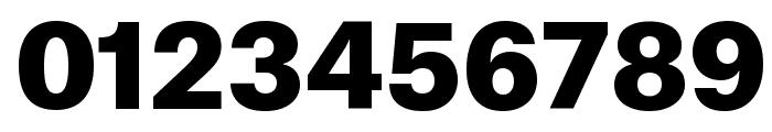AtlasGrotesk Black Reduced Font OTHER CHARS