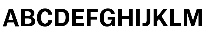 AtlasGrotesk Bold Reduced Font UPPERCASE