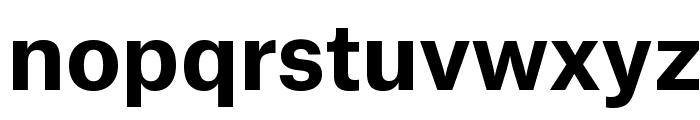 AtlasGrotesk Bold Reduced Font LOWERCASE