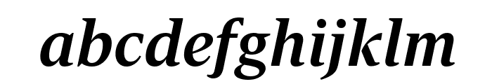Dignitas BoldItalic Reduced Font LOWERCASE
