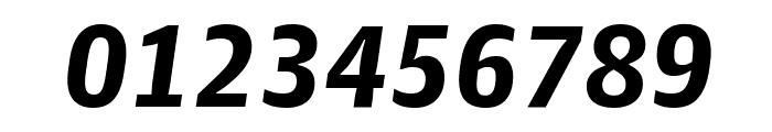 GuardianAgateSans DuplexBlackItalic Reduced Font OTHER CHARS