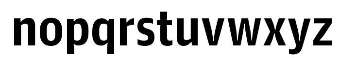 GuardianAgateSans G1DuplexBold Reduced Font LOWERCASE