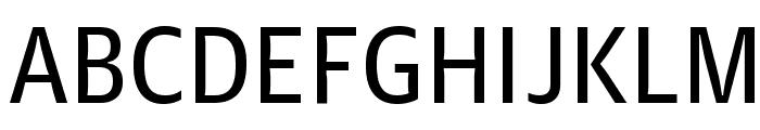 GuardianAgateSans G2DuplexRegular Reduced Font UPPERCASE
