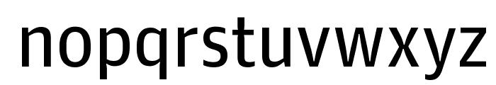 GuardianAgateSans G2DuplexRegular Reduced Font LOWERCASE