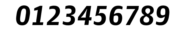 GuardianAgateSans G3BoldItalic Reduced Font OTHER CHARS