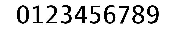 GuardianAgateSans G3DuplexRegular Reduced Font OTHER CHARS