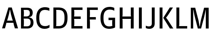 GuardianAgateSans G3DuplexRegular Reduced Font UPPERCASE