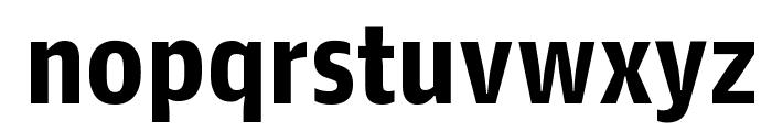 GuardianAgateSans G4DuplexBold Reduced Font LOWERCASE