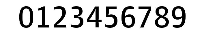 GuardianAgateSans G4DuplexRegular Reduced Font OTHER CHARS