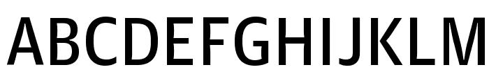 GuardianAgateSans G4DuplexRegular Reduced Font UPPERCASE