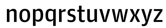 GuardianAgateSans G4DuplexRegular Reduced Font LOWERCASE