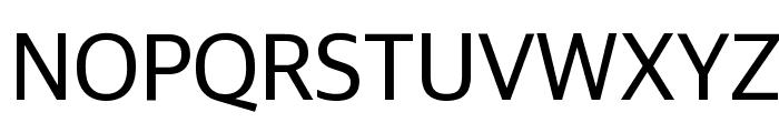GuardianSans Regular Reduced Font UPPERCASE