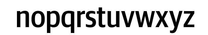 GuardianSansCond Medium Reduced Font LOWERCASE